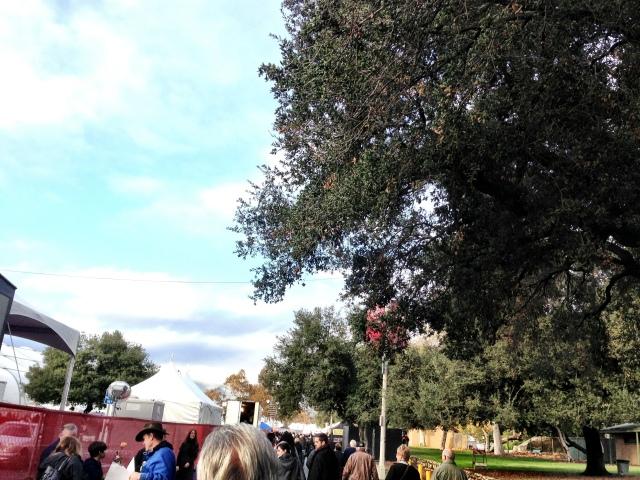 Vyvacious || Walk to Rosemont Pavilion