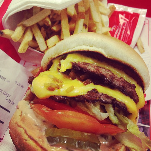 Vyvacious || Double double animal style with fries at In-N-Out