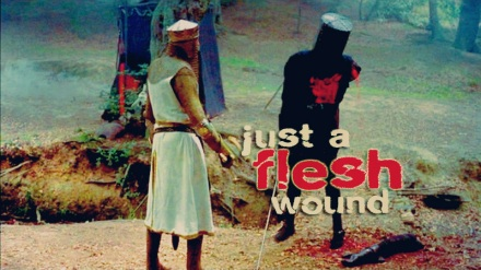 Just-A-Flesh-Wound-monty-python-and-the-holy-grail